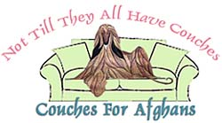 Couches For Afghans